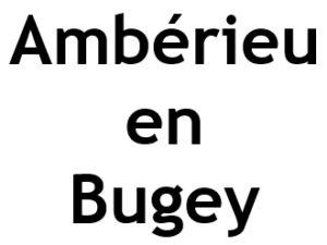 Ambérieu en Bugey 01500. I-P-W Référencement Création Promotion de site Web en télétravail partout en France