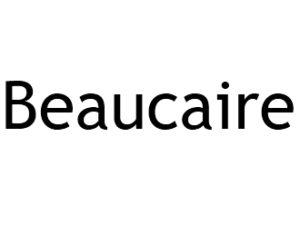 Beaucaire 30300 I-P-W Référencement, Création, Promotion de site Web en télétravail partout en France