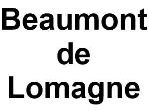 Beaumont de Lomagne 82500. I-P-W agence web Référencement, Création, Promotion de site Web en télétravail partout en France