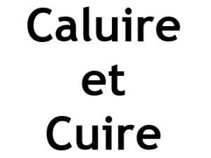 Caluire et Cuire 69300. I-P-W Référencement Création Promotion de site Web en télétravail partout en France