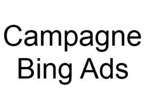 Campagnes Bing Ads Liens sponsorisés ou référencement payant