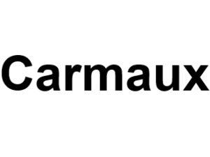 Carmaux 81400. I-P-W agence web Référencement, Création, Promotion de site Web en télétravail partout en France