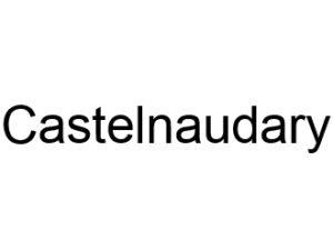 Castelnaudary 11400 I-P-W Référencement, Création, Promotion de site Web en télétravail partout en France
