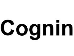 Cognin 73160. I-P-W Référencement Création Promotion de site Web en télétravail partout en France