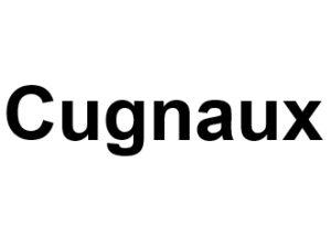 Cugnaux 31270. I-P-W Référencement, Création, Promotion de site Web en télétravail partout en France
