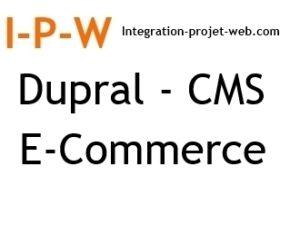 Référencement naturel Dupral CMS et E Commerce I-P-W agence web Marseille Aix et en télétravail partout en France