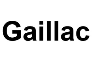 Gaillac 81600. I-P-W agence web Référencement, Création, Promotion de site Web en télétravail partout en France