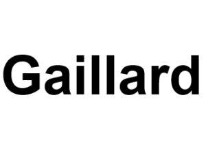 Gaillard 74240. I-P-W Référencement Création Promotion de site Web en télétravail partout en France