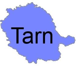 Tarn 81. I-P-W Référencement Création Promotion Web en télétravail partout en France