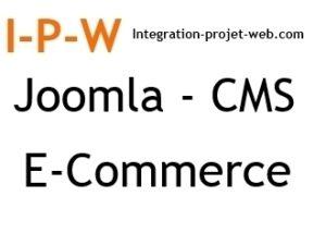 Référencement naturel Joomla site CMS E-commerce ou dynamique I-P-W agence web Référencement, Création, Promotion de site Web en télétravail partout en France