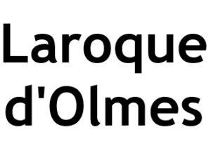 Laroque d'Olmes 09600 I-P-W Référencement Création Web en télétravail partout en France