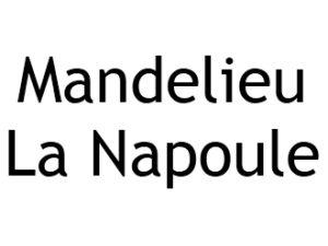 Mandelieu la Napoule 06210 I-P-W agence web Référencement, Création, Promotion de site Web en télétravail partout en France