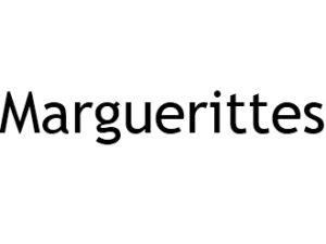 Marguerittes 30320 I-P-W Référencement, Création, Promotion de site Web en télétravail partout en France