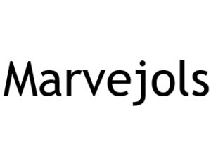Marvejols 48100. I-P-W Référencement, Création, Promotion de site Web en télétravail partout en France