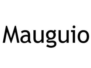 Mauguio 34130. I-P-W Référencement, Création, Promotion de site Web en télétravail partout en France
