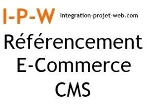 Référencement naturel de site E commerce CMS - SGC I-P-W agence web Marseille Aix en télétravail partout en France
