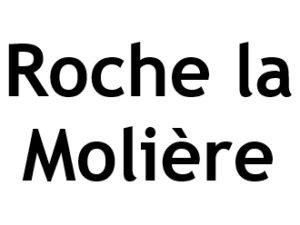 Roche la Molière 42230. I-P-W Référencement Création Promotion de site Web en télétravail partout en France