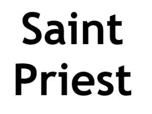 Saint Priest 69800. I-P-W Référencement Création Promotion de site Web en télétravail partout en France