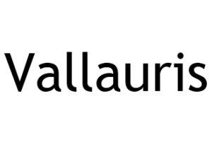 Vallauris 06220 I-P-W agence web Référencement, Création, Promotion de site Web en télétravail partout en France