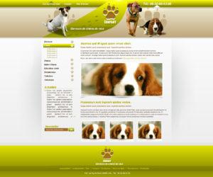 graphisme-et-site-web Site Canin et autres activités autour du Chien -i-p-w-agence-web-référencement-marseille-paca
