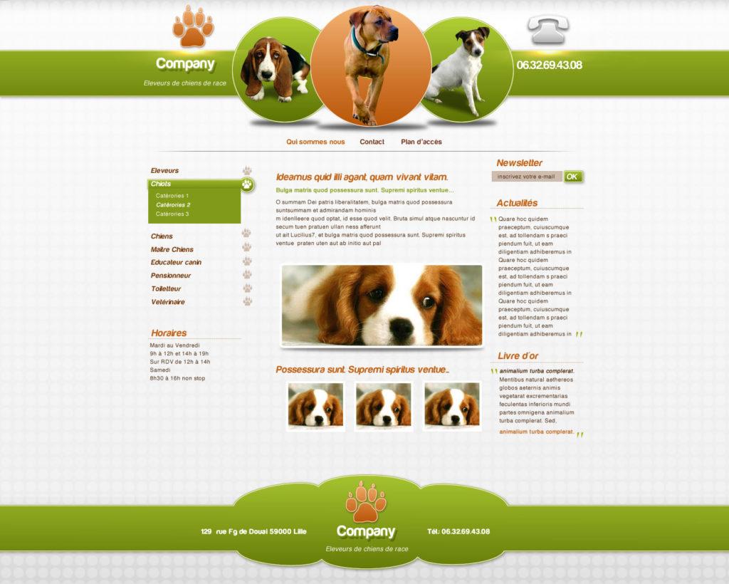 Création de Site Web Canin pour Chien Graphisme et site I-P-W agence Web Marseille Aix télétravail partout en France