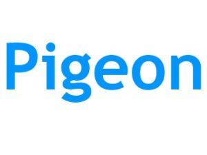 Pigeon filtre Google pour le Referencement Local