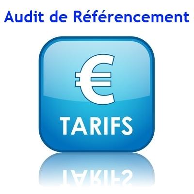 Tarif Audits en référencement naturel pour site web