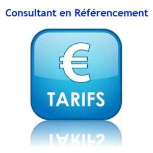 tarif consultant referencement