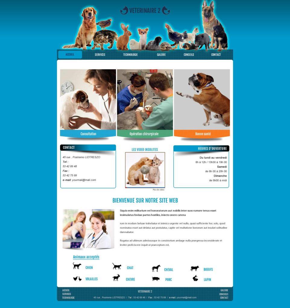 Création de Site Web Vétérinaire Soin aux Animaux Graphisme et site I-P-W agence Web Marseille Aix télétravail partout en France