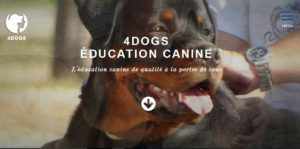 Dernier site web réalisé Education4dogs par I-P-W agence Marseille Aix