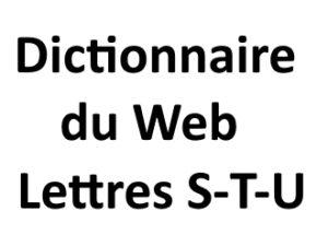 Dictionnaire du web Lettres S T U L'agence Web I-P-W Marseille Aix en Provence en Télétravail partout en France